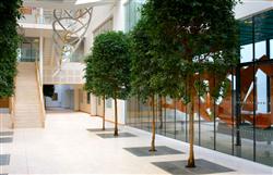 BHI Atrium